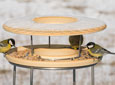 Bird Table & Stand
