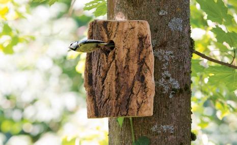 Natural Nesting Box
