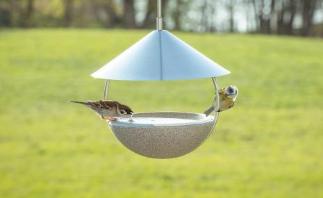 Around Bird Bath Granicium®