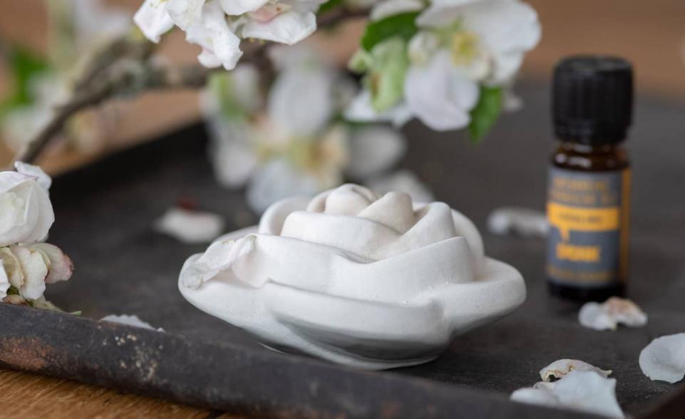 Scent Rose White